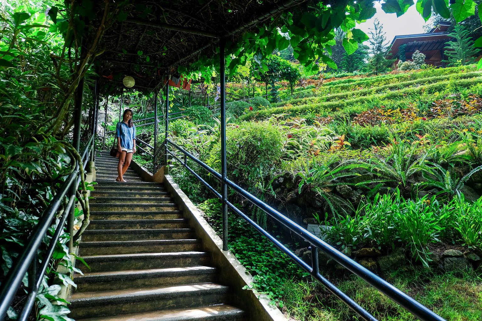 edited-terrazas-de-flores-botanical-garden-17