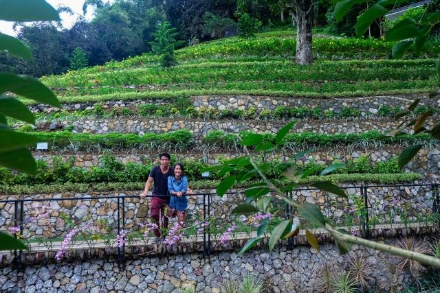 edited-terrazas-de-flores-botanical-garden-20