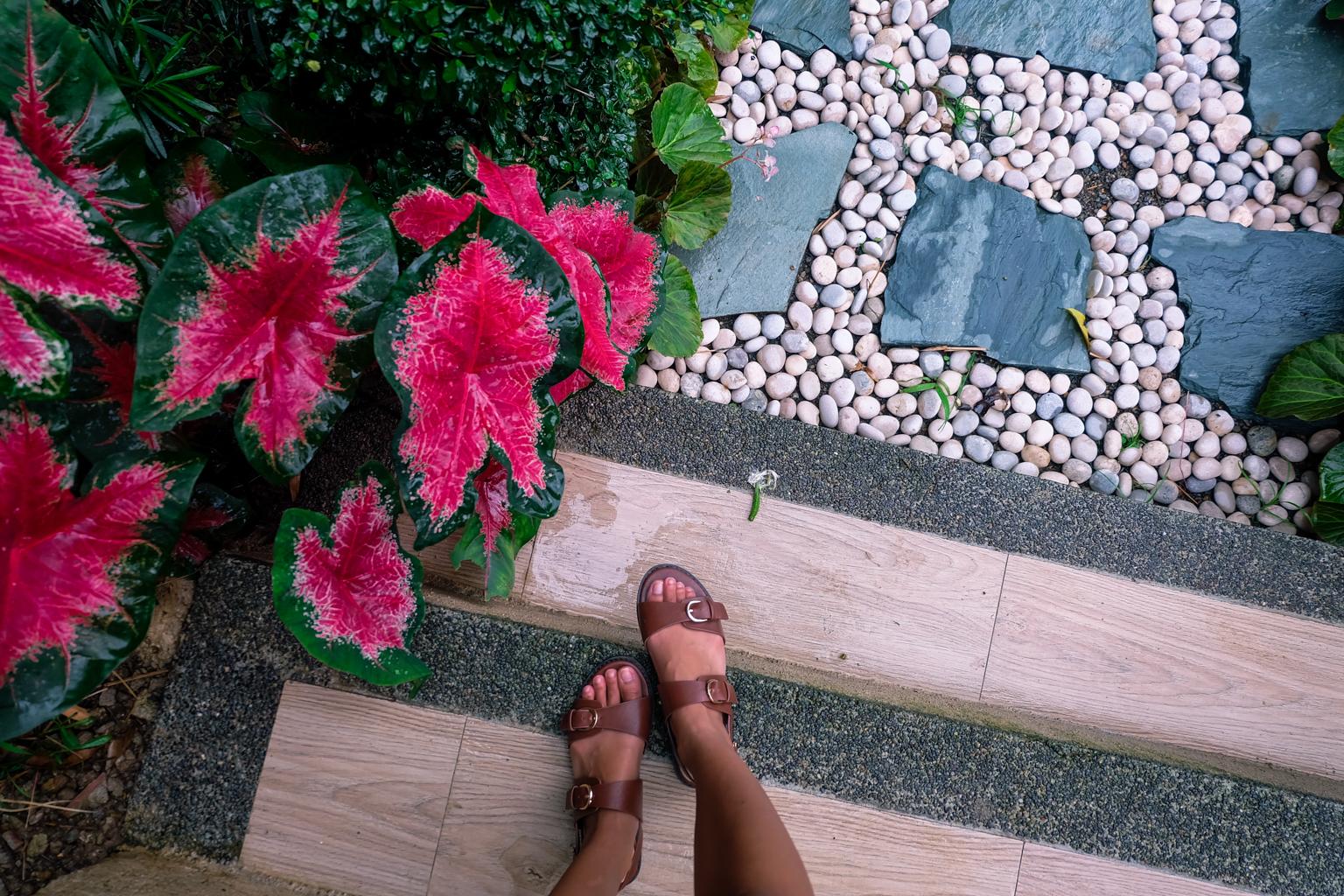edited-terrazas-de-flores-botanical-garden-30