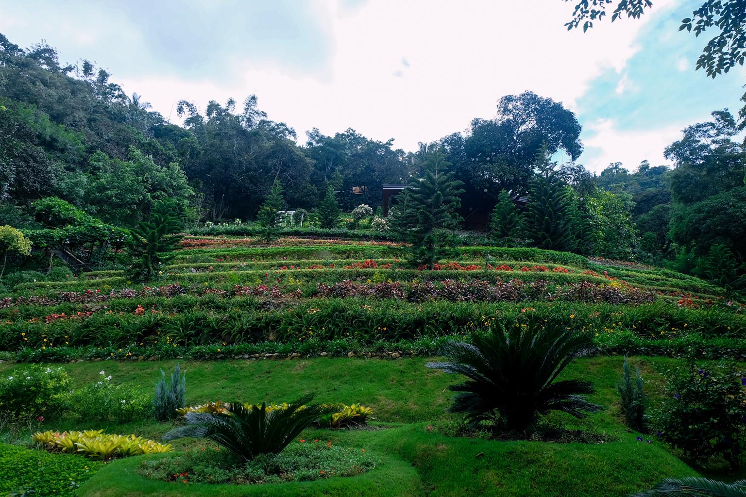 edited-terrazas-de-flores-botanical-garden-31